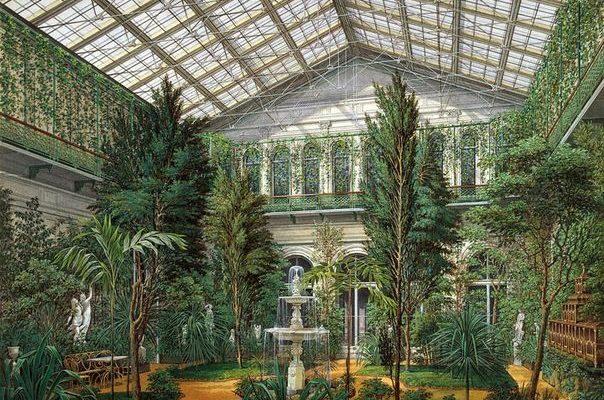 история возниконовения оранжереи