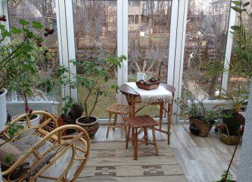 Зимний сад Киев купить